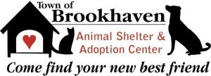 Brookhaven Animal Shelter