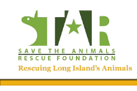 Save the Animals Rescue Foundation